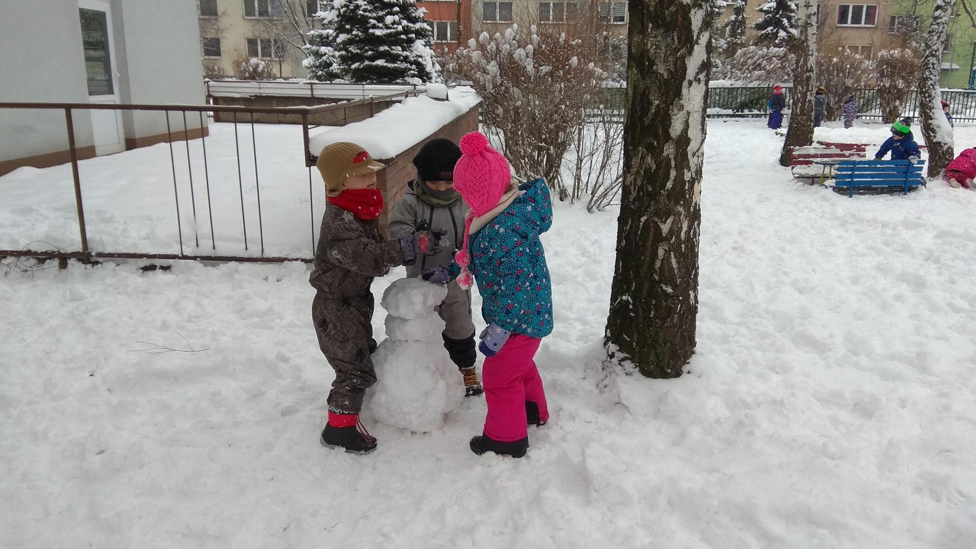 na zahradě se sněhulákem