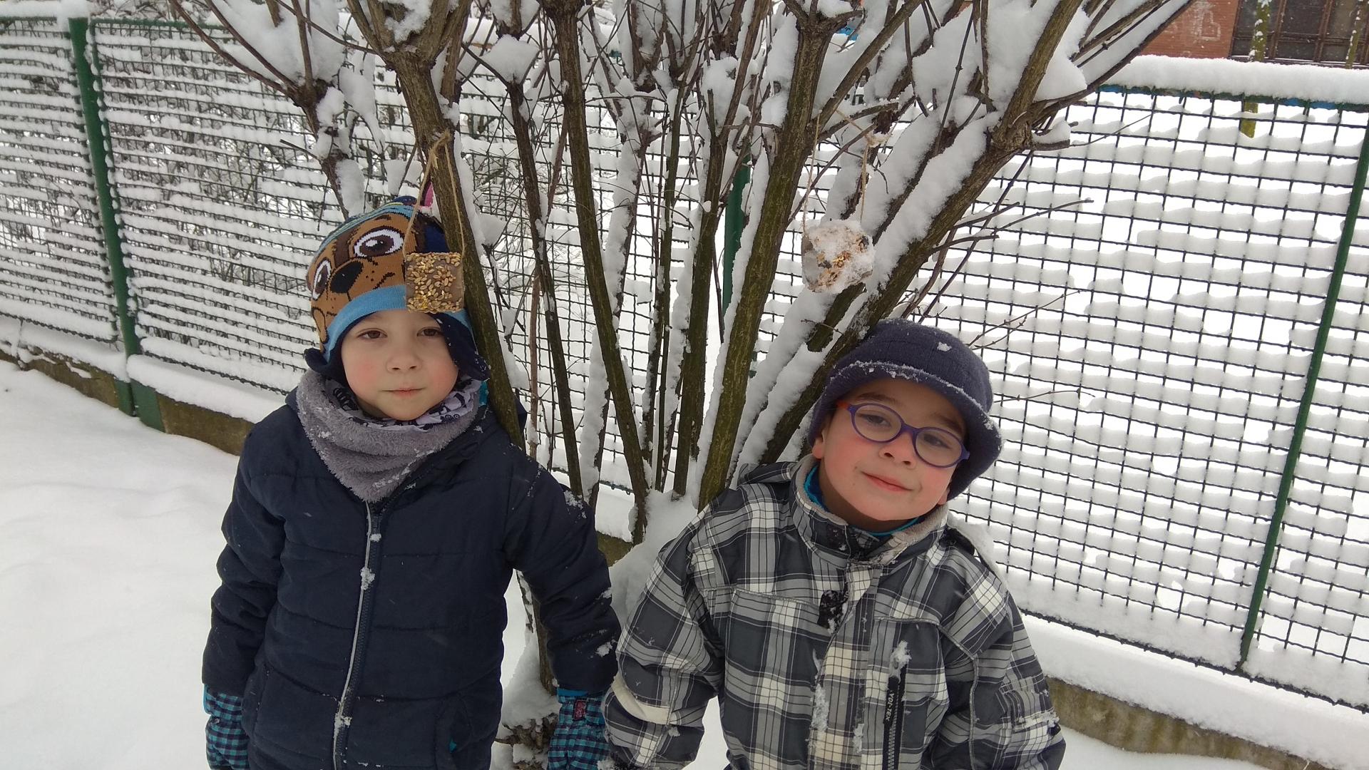 Chlapci pověsili dobroty pro ptáky.
