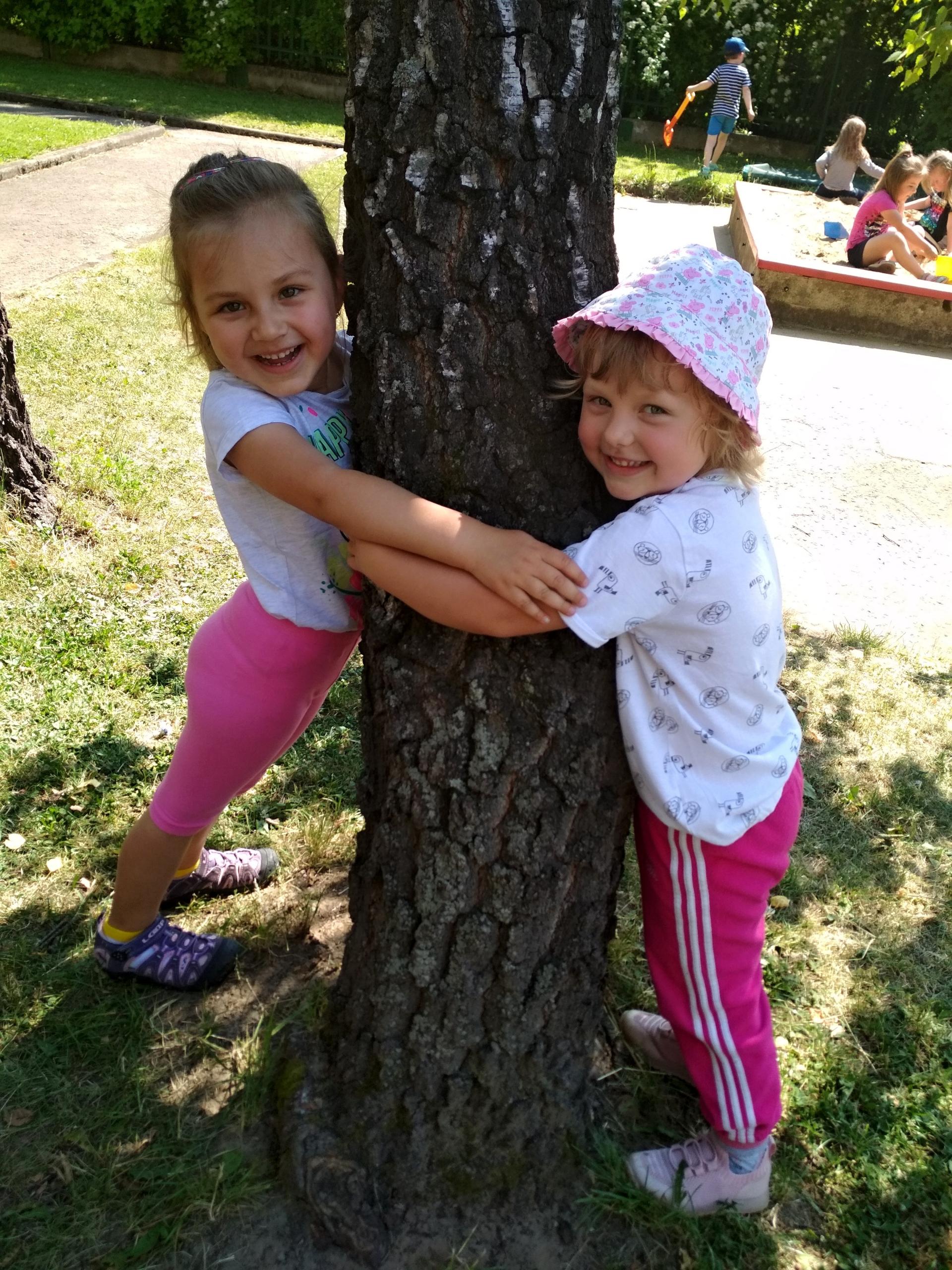 objímání stromu