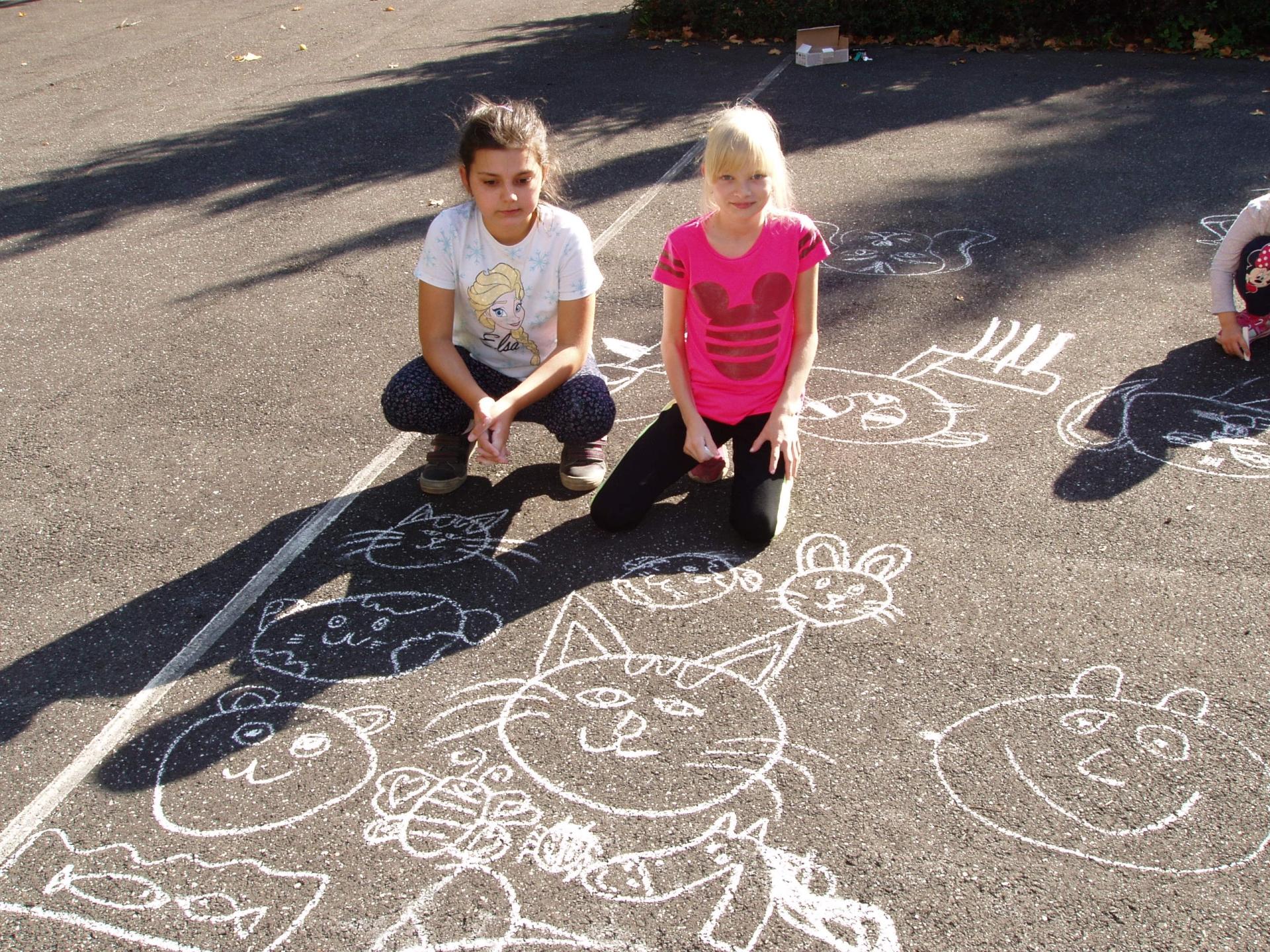 Kreslení zvířat na asfalt